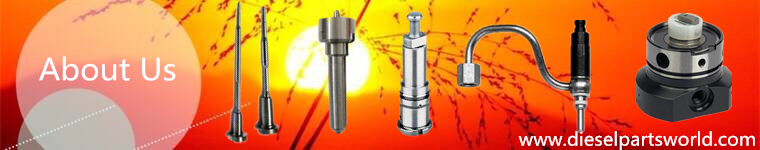 a manufacturer and supplier of diesel Nozzle,diesel Plunger,,Pencil nozzle,Head rotor,injector,d.valve...